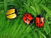 Juego 2 Many Bugs