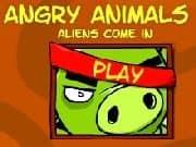 Juego Angry Animals