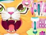 Juego Dentista de Gatos