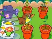 Juego Doras Magical Garden
