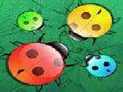Juego Escarabajos